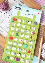 Hi I am a rabbit,Carrot are you...?3D Kids Kawaii Fabric Felt Sticker