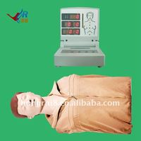 bust adult Used CPR manikin,Nursing CPR dummy