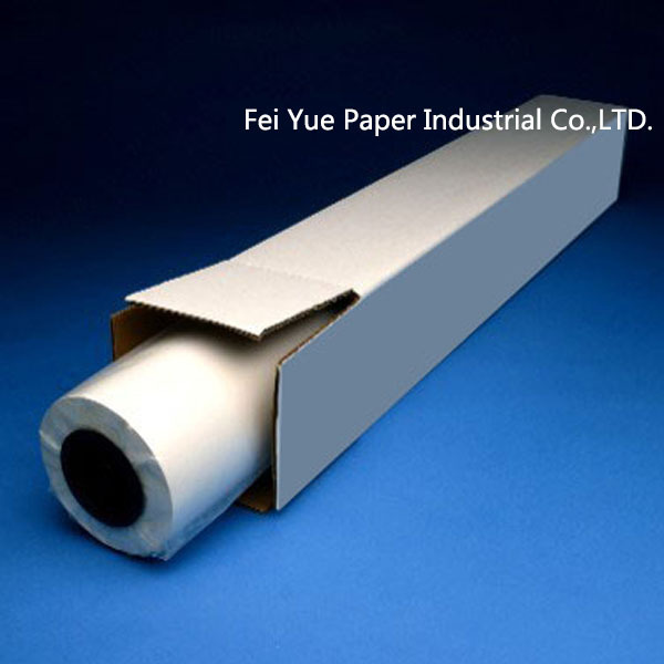 Inkjet RC Glossy/Satin Roll Paper for Business and Personal Imaging
