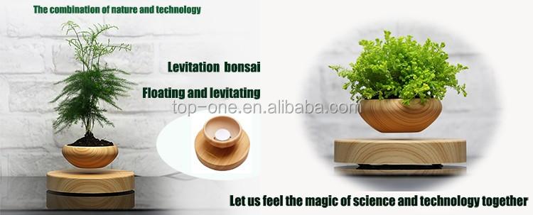 top vente mod le priv l vitation pot pots pour plante en pot pots fleurs jardini res id de. Black Bedroom Furniture Sets. Home Design Ideas