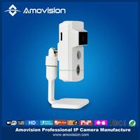 alarm inspection motion detection monitor webcam mini ip wifi camera h.264 network ip camera