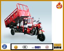 China good quality hydraulic gas petrol dump cargo tricycle