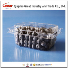 Eco-Friendly Fruit Boxes Disposable Clear Container Plastic Blueberry container