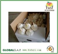Fresh white garlic 5.5cm specification