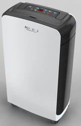 80pint/D Refrigerator Swimming Pool Dehumidification Machine with air purifier