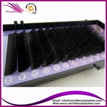 Hot sale!!! wholesale price logo on package L curl eyelash extension