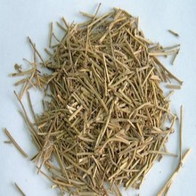 High Quality Chinese Ephedra Herbs Ma huang Herb Extract 10:1
