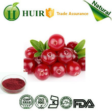 Health food New product free sample Cranberry Extract/10%-25% Anthocyanidin/30%-50% Proanthocyanidin