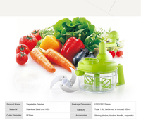 ABS Vegetable and Fruit Grinder Machine with Stainless Steel Blades