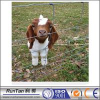 high quality cheap galvanized metal dog fence ( OEM&ODM )