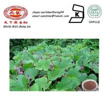 Lobed Kudzuvine Root Powder Extract daidzin/ 99%puerarin Extract Powder Kudzu Root / Radix Puerariae Powder