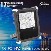Constant current drive power portable generator flood light