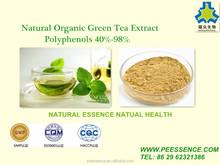100% NATRUAL AND ORGANIC GREEN TEA EXTRACT TEA POLYPHENOLS POWDER 70%