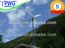 1000w windmill for home use