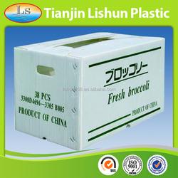 Durable Cheap Recyclable PP Coroplast Bin