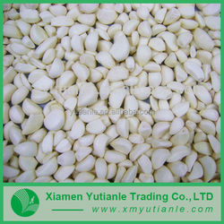 Wholesale new age products garlic price in china