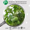 Halal&ISO&Kosher certificate Sarsaparilla Root Extract
