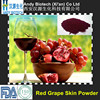 Factory Supply Resveratrol 1% Red Grape Skin Extract