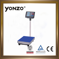 YZ-804 100kg to 500kg electronic digital platform weighing scale seca weighing scales