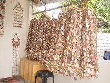 Seashells Hanging Decor