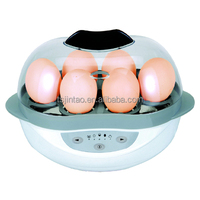 Hot Selling Egg Cooker