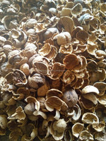 Crushed Walnut Shell for cleaning application