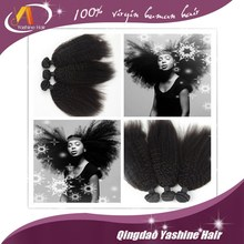 Top Quality Perm Yaki Human Hair Curly Weave , Wholesale Price Darling Braiding Hair For Braiding