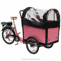 cargo e tricycle with pedal assist