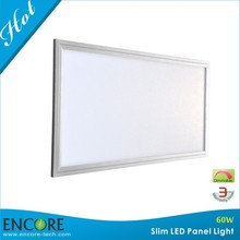 High Power High Brightness LED 1200X600 Ceiling Panel Light with Dimmable LED Panel CE RoHS