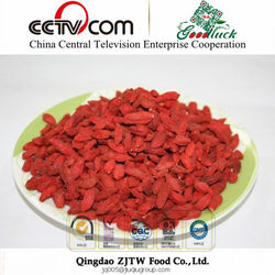 Importer Distributor Organic Goji Berry Ningxia China Lycium Barbarum Raw Dried Fruit