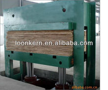 plywood cold press/automatic cold press machine for plywood/price of hydraulic cold press machine