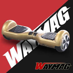Waymag Lithium battery electric unicycle mini scooter with cheap price