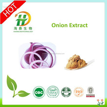 High Quality Onion Powder,Onion P.E.,Onions Powder