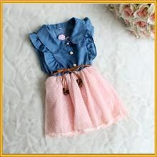 2015 Beautiful Kids Dress Girl Dress 10 Year Strawberry Girl Dress ZZJ-DR-322