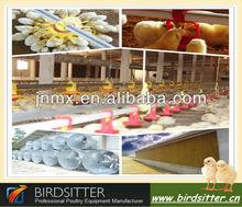 Pollo aumento