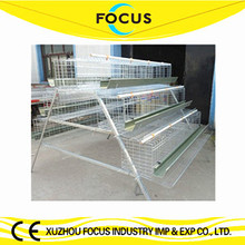Focus industry one stop purchasing farm equipment for chicken farm use chicken incubation and raising