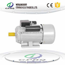 YC single phase starting and working capacitor ac synchronous motor