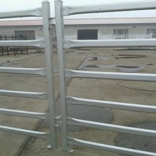 wholesale cheap hot dipped galvanized horse training pens (manufacturer, ISO9001)