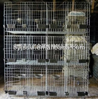 Metal Wire Pigeon Cage From Manufacture