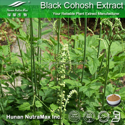 Factory supply Black cohosh extract/Triterpene Glycosides 20%/Black cohosh powder/Cure Arthritis plant extract