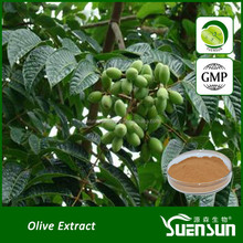 Gmp factory supply High quality olive leaf extract hydroxytyrosol