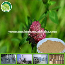Superior quality of Chinese Red Clover Extract with free sample