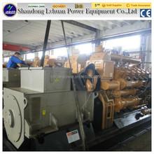 houshold waste animal digester power plant china biogas generator