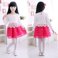 Fashion Net Yarn Splicing Hollow Out birthday dress for girl of 7 years old SV012175