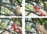 Professional electric tree trimmer