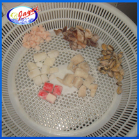 IQF freezing process frozen sea food mix