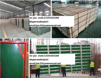 30 times repeated use high tech 18MM PP film faced plywood