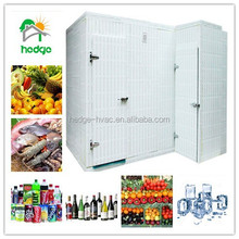 Customize walk in cold room freezer made in GuangZhou