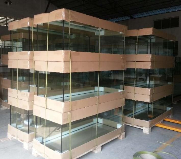 Indoor fish farming tanks fishing aquariums tanks buy for Indoor fish farming