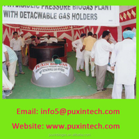 PUXIN 10m3 mini plant digester disposer for biogas use food and human waste